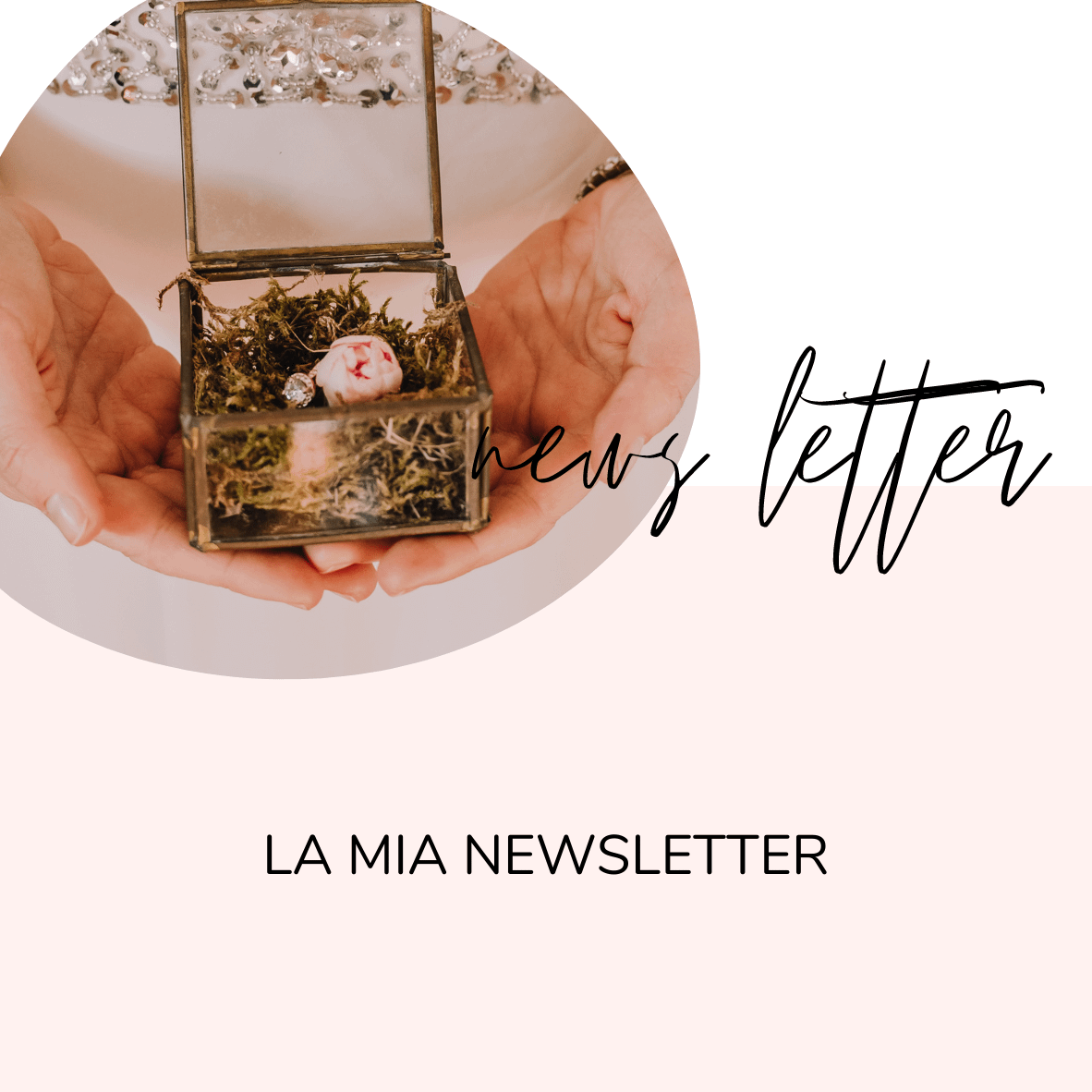 newsletter wedding planner